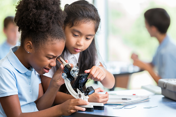Diverse schoolgirls work together on science project